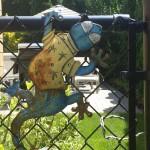 Gate Lizard